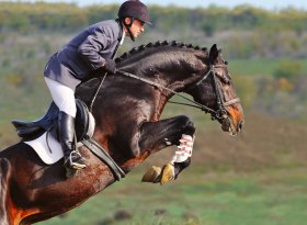 Find self-catering accommodation for equestrian events