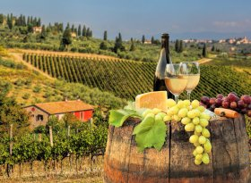 Find self-catering accommodation for Chianti