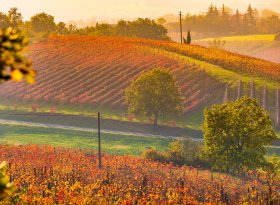 Find self-catering accommodation for Emilia Romagna
