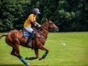 Find self-catering accommodation for Mint Polo in the Park...