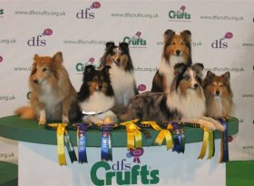 Find self-catering accommodation for Crufts