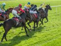 Find self-catering accommodation for Northumberland Plate Festival...