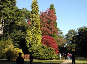 Find self-catering accommodation for Westonbirt Arboretum 2016
