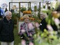 Find self-catering accommodation for Malvern Autumn Show 2016...