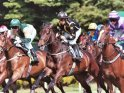 Find self-catering accommodation for British Champions Day 2016...
