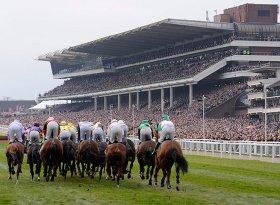 The Open at Cheltenham Racecourse, 2015