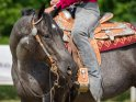 Find self-catering accommodation for Jerez Horse Fair...