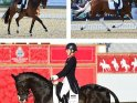 Find self-catering accommodation for Royal Windsor Horse Show