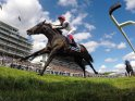 Find self-catering accommodation for Epsom Derby...