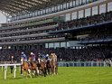 Find self-catering accommodation for Royal Ascot...
