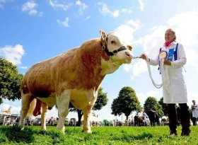 Find self-catering accommodation for Royal Norfolk Show