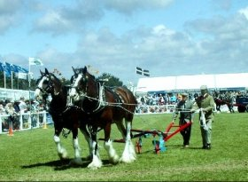 Find self-catering accommodation for Royal Cornwall Show
