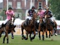 Find self-catering accommodation for Polo in the Park...