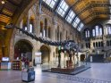 Find self-catering accommodation for Natural History Museum, London...