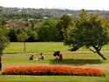 Find self-catering accommodation for Alexandra Park and Palace...