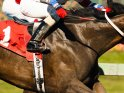 Find self-catering accommodation for King George VI Chase...