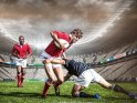 Find self-catering accommodation for Rugby 4 Nations...