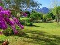 IMG_3615 garden.JPG