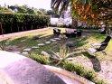 Garden!!