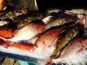 Trogir fish market!