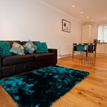 Find self-catering accommodation for Contemporary NY Style 2 bedroom self catering apartment in Soho, London. Stylish modern apartment.